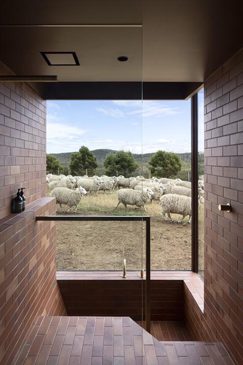 Casa Tasmania 12