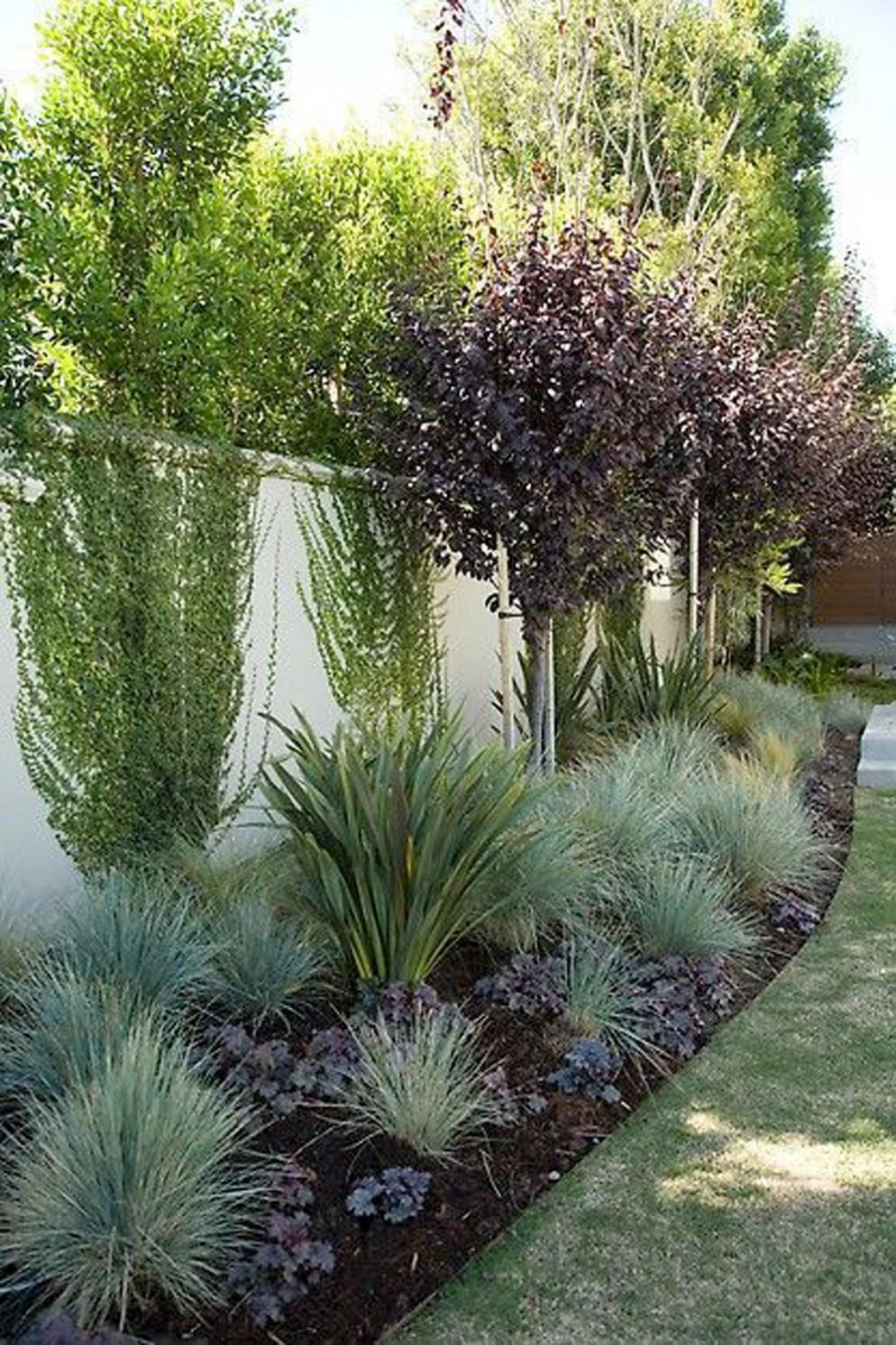 alberi-da-giardino-sempreverdi-8. ashadeifteal.comliving-corriere