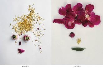book-54+1-portraits-by-Valérie-Barkowski-1