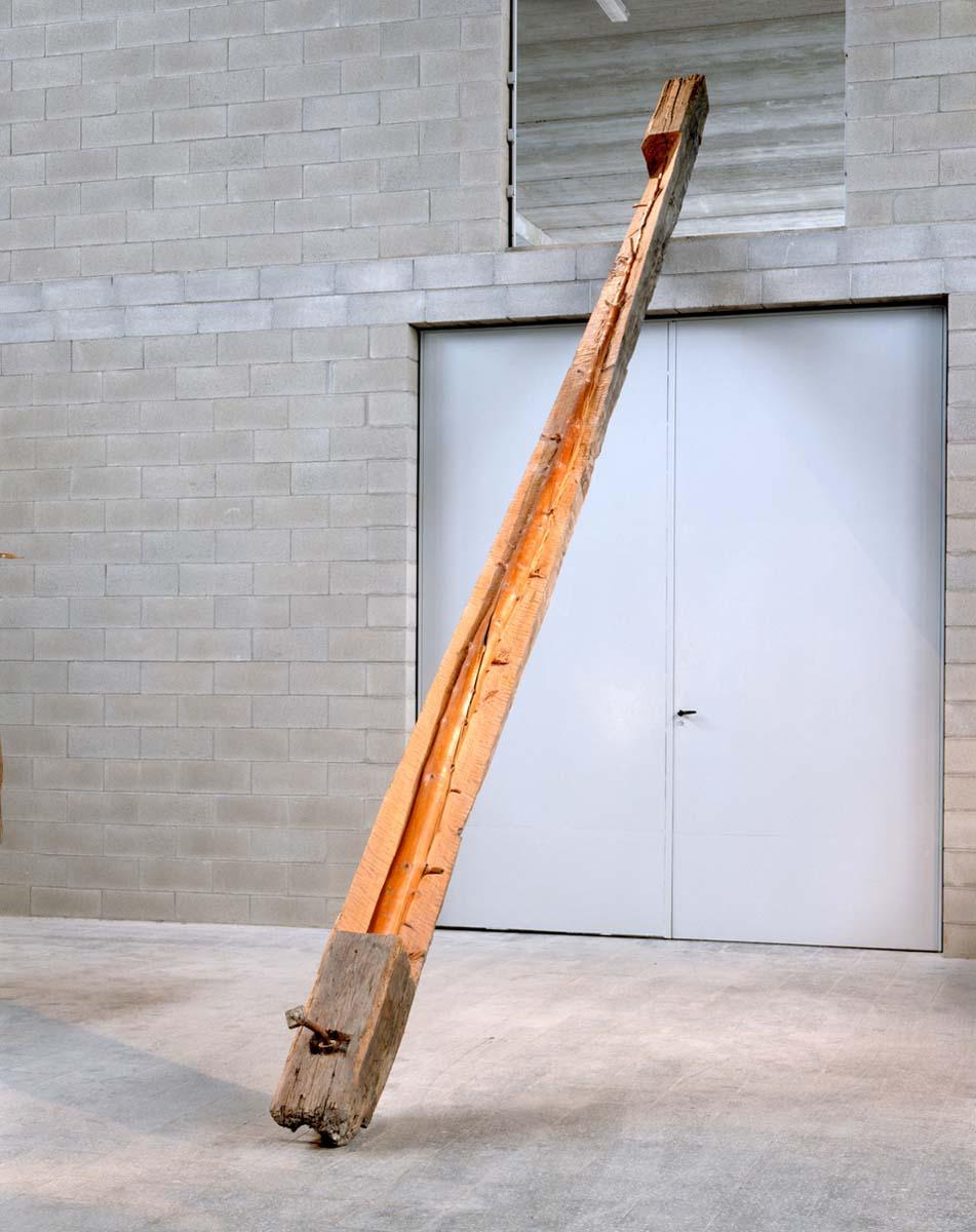 Albero in torsione destra_1989_cod196 - studio dell'artista, Torino
