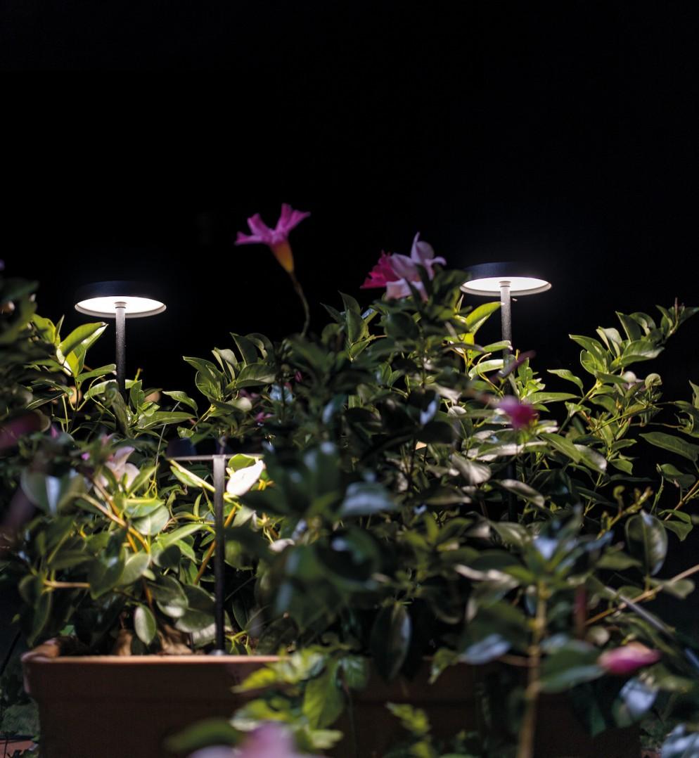 lampade-design-2021-linea-light
