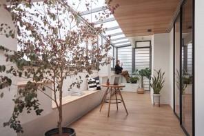 Stile Japandi e tante piante per un appartamento con serra a Taiwan