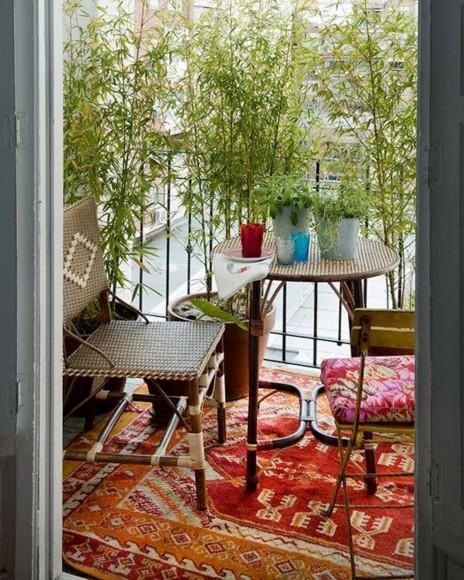 piante-da-balcone-resistenti-7. bamboo-livingcorriere