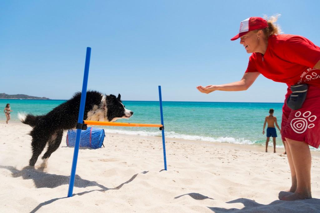 La Dog Beach di Tiliguerta