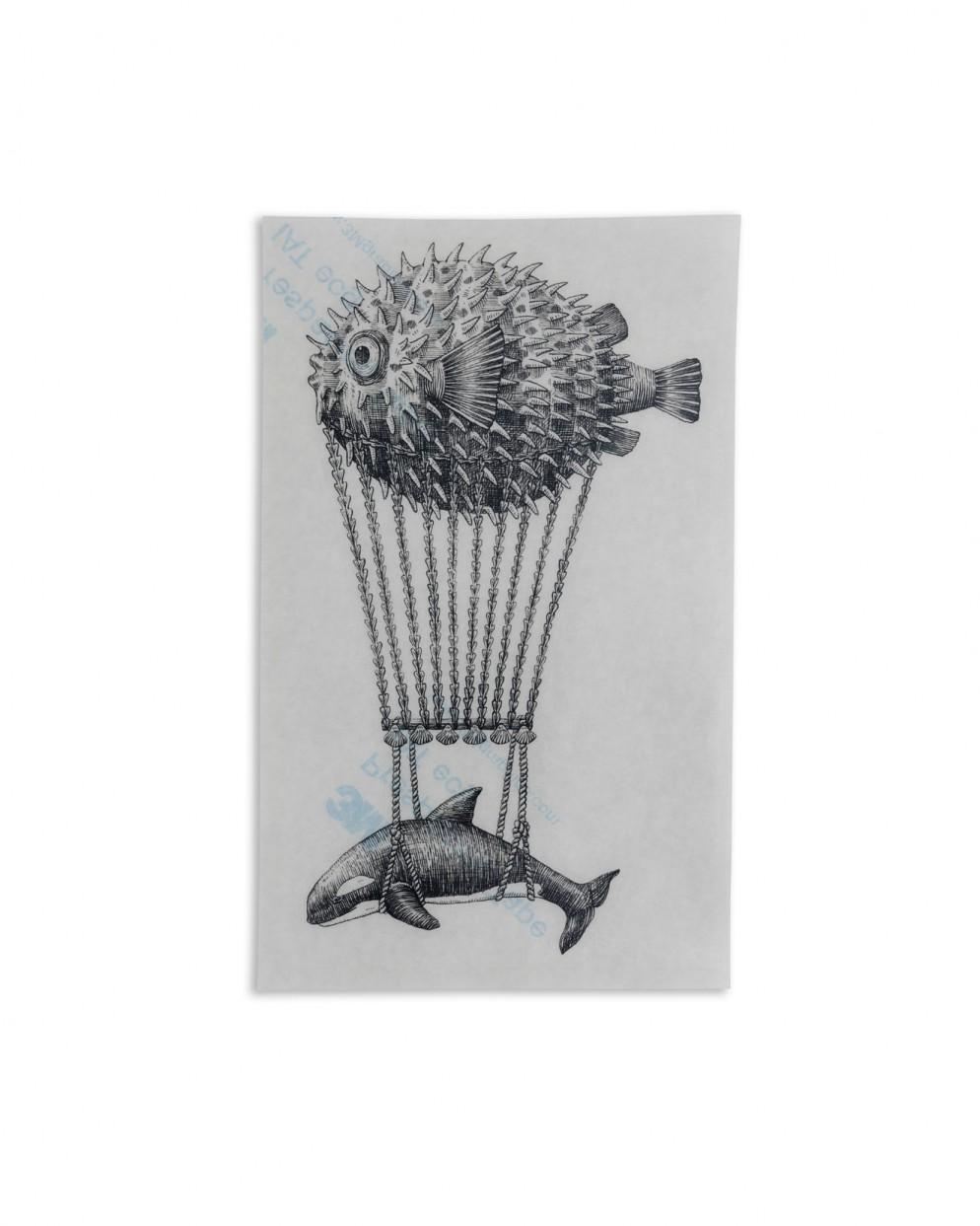 collezione-stickers-notebook-piatti-aquatic-creatures-14