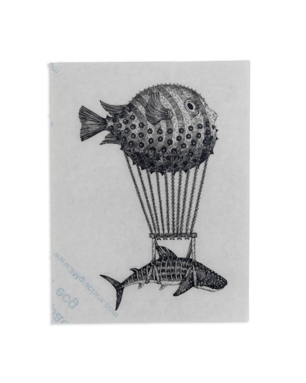 collezione-stickers-notebook-piatti-aquatic-creatures-20
