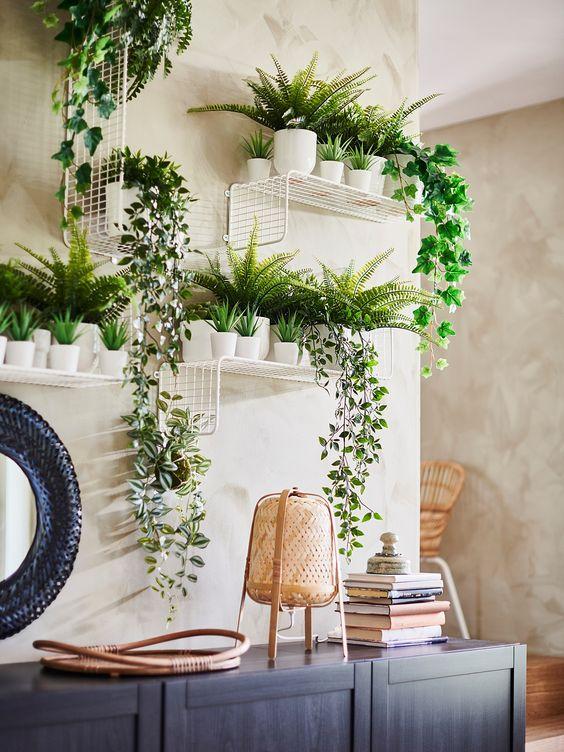 piante-ricadenti-da-interno-9. ikea.com-living-corriere