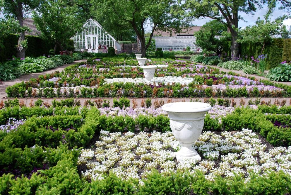 piante-sempreverdi-da-giardino-7. Gineproliving-corriere