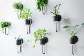 Portavasi da parete di design, per piante come quadri