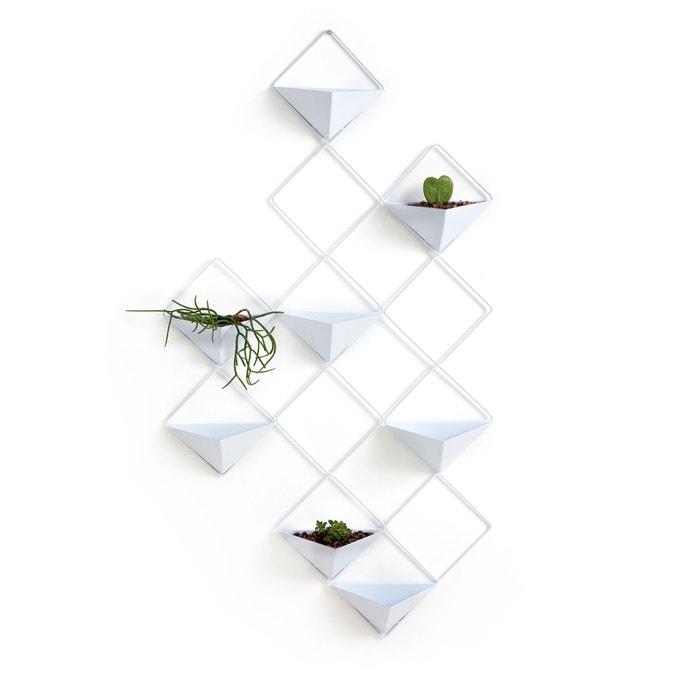 portavasi-parete-design