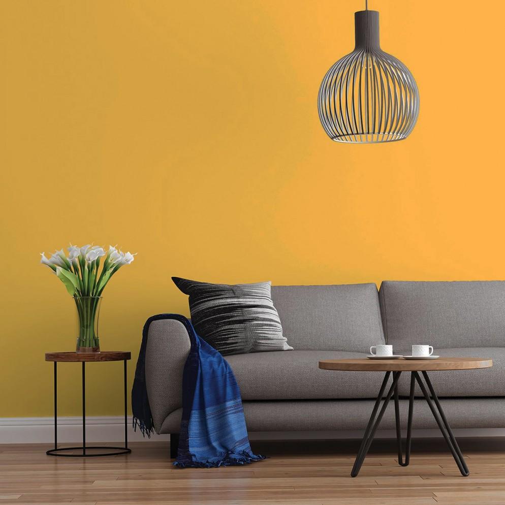 19 color-senape-pareti_living-correre