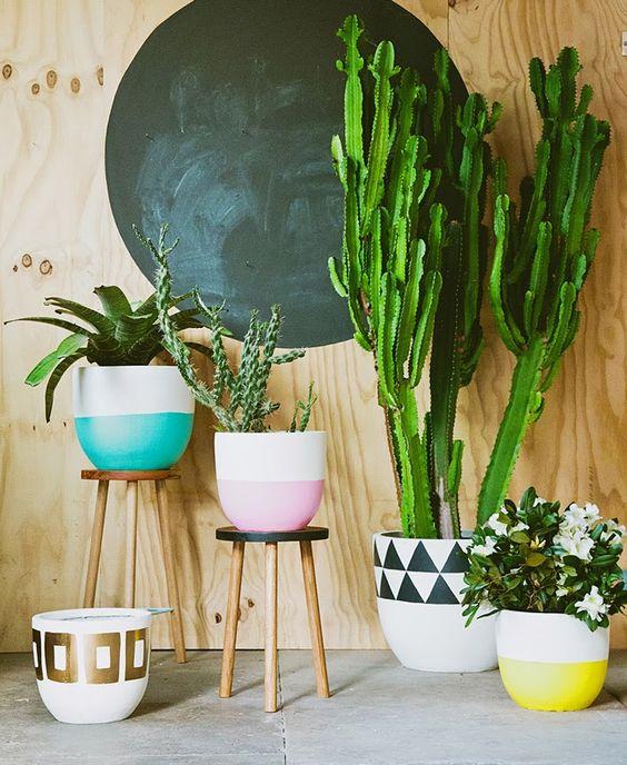 piante-da-interno-6. poppytalk.com-living-corriere
